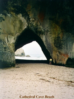 a_cathedral_cove