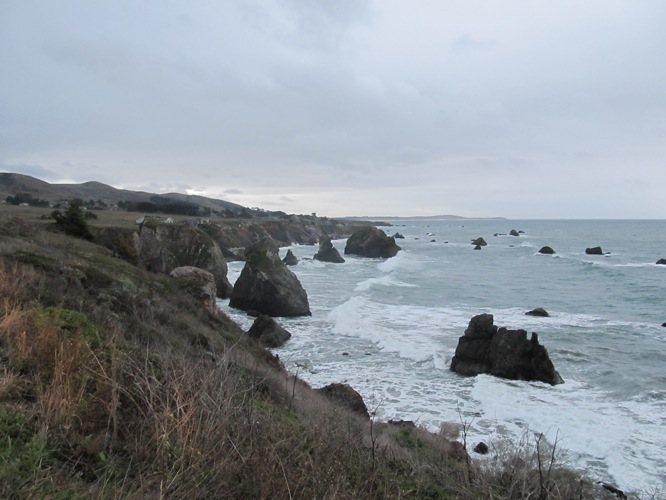North of Bodega Bay